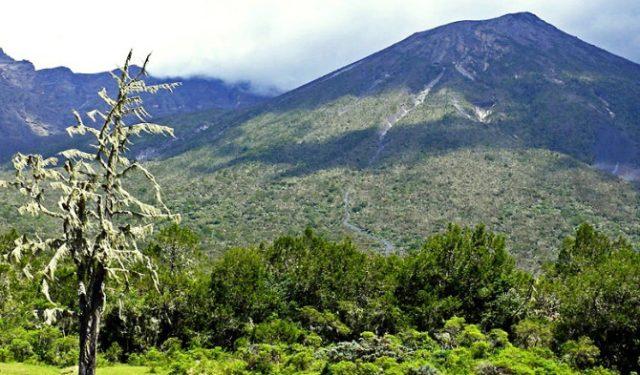 Гора Луиджи ди Савойя