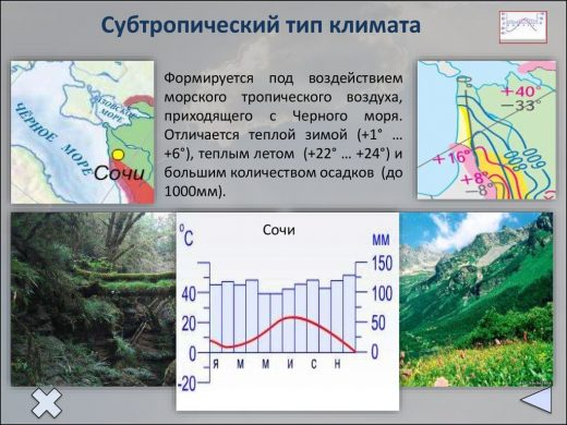Субтропический климат России