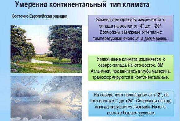 Умеренно-континентальный климат России